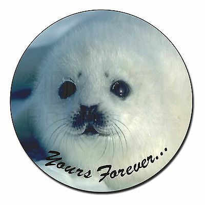 Snow Seal 'Yours Forever' Fridge Magnet Stocking Filler Christmas Gift, AF-S14FM