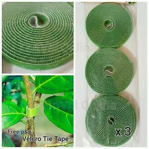 3 x Velcro Garden Tree Ties Plant Tie Tape Tomato Apple Green House Wire Pc 2m