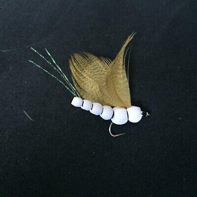 PN212 36 Artflies Bead Body Caddis Larva Flies 6 Popular Colors #14,