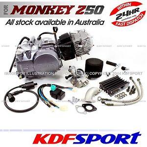 KDF LIFAN 140CC ENGINE OIL COOL MOTOR 1P55FMI DIRT BIKE MOTORCYCLE