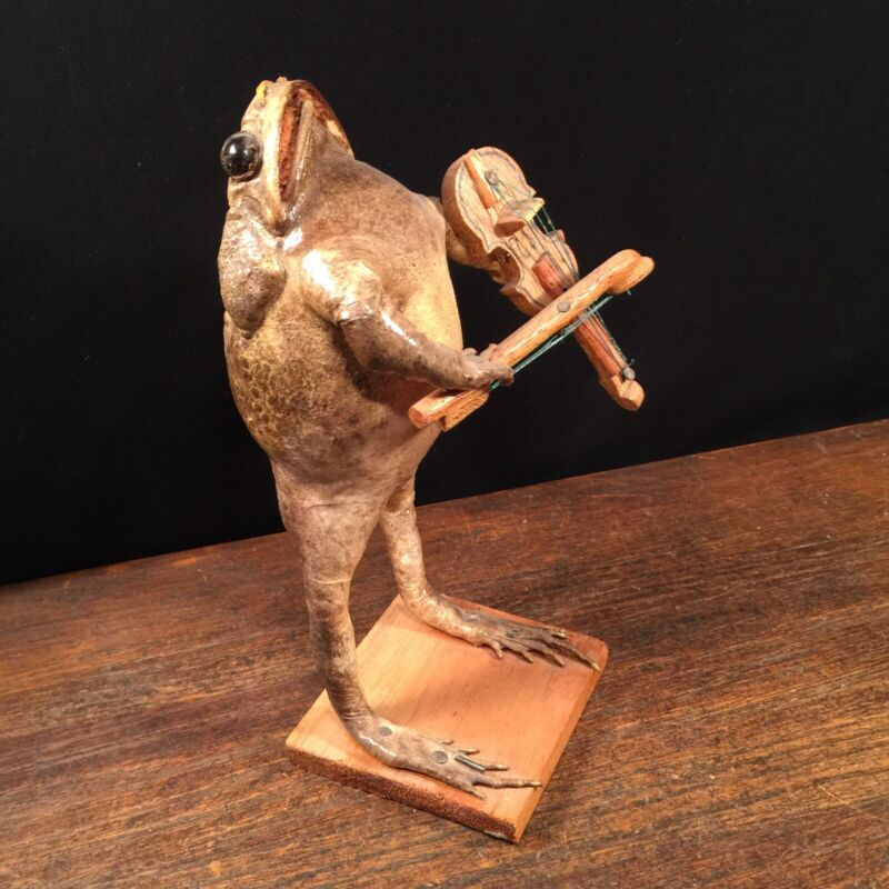 Vintage Toad Frog Taxidermy Figure Playing Violin Fiddle PRIORITY MAIL