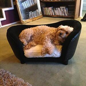 Plush designer dog lounge couch dog bed Sandy Bay Hobart City Preview