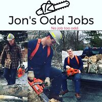 Tree removal/trimming/limbing/cutting and cleanup