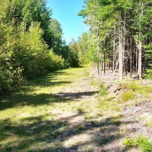 Woodlot/Acreage/Land for sale in Highfield, close to Sussex, NB