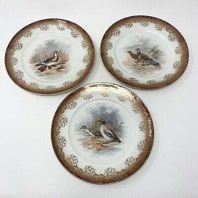 "Vintage SAXON China Bird Cabinet Plates Geese Pheasant Pigeon Guinea 8"" Set of 3"