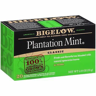 6 Pack Plantation Mint Black Tea Bags 20 Count Boxes 120 Tea Bags Total BEST