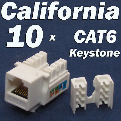 10 X Pcs lot Keystone Jack CAT6 Network Ethernet 110 Style Punch Down 8P8C RJ45, usado segunda mano  Embacar hacia Argentina
