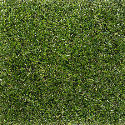 40mm Deluxe Artificial Grass Realistic Astro Natural