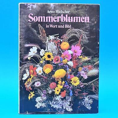 DDR Fachbuch   Sommerblumen in Wort und Bild   Arno Hielscher 1987