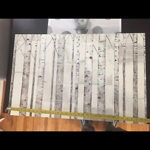 """White Birch Wall Art ~33x22"""" (bought at Home Outfitters)"""