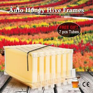 7Pcs Auto-Flowing Honey Beehive Frames Beekeeping Kit Bee Hive Auto Harvest