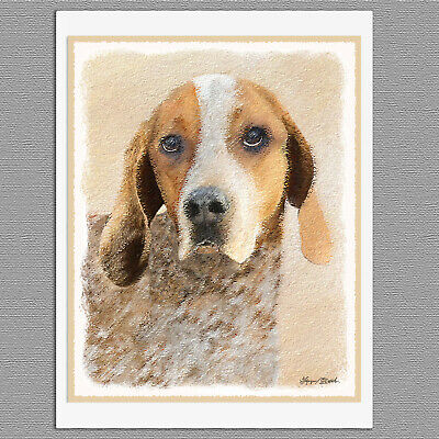 6 American English Coonhound Dog Blank Art Note Greeting Cards American English Coonhound Dog