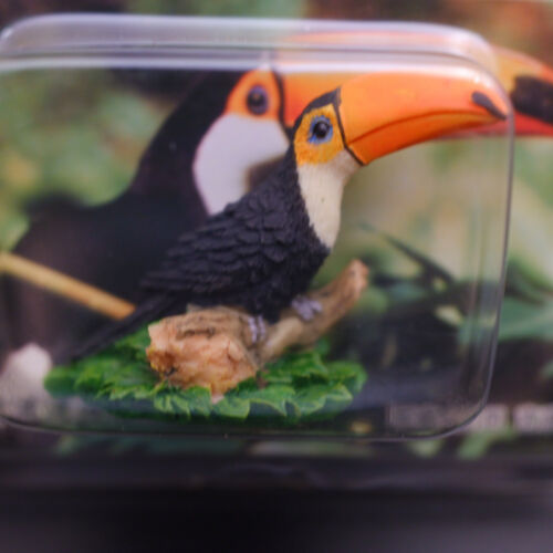 Kabaya Mysterious Animals Toco Toucan Bird