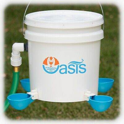 Oasis Chicken Waterer Kit Fully Automatic Watering Bucket No Tabs To Peck