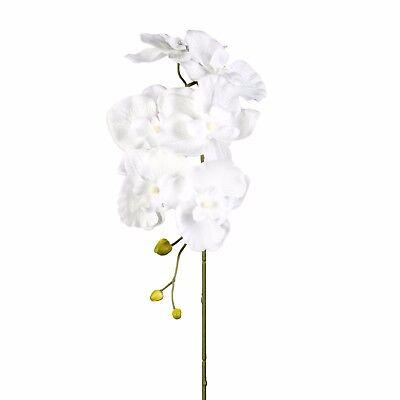 Kunstblume PHALENOPSIS, ORCHIDEENZWEIG 76 cm, Orchidee in weiß, WEISS 1017101-40