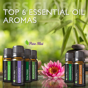 Pure Mist gift set top 6 100% pure aromatherapy diffuser essential oils kit