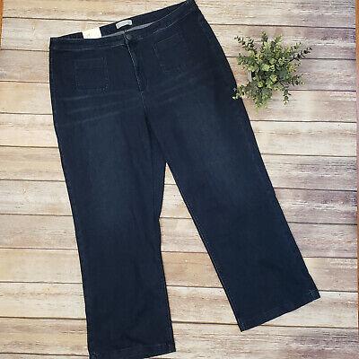 J Jill Plus Size 22 Full Leg Dark Marine Wash Denim Smooth Fit Jeans Rainstorm