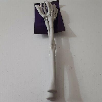 HALLOWEEN ~ Skeleton Hands & Arms Salad Tongs Kitchen Decoration Spooky Utensils
