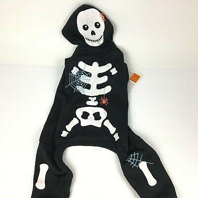 Martha Stewart Pets Glow in the Dark Skeleton - Martha Stewart Kostüm