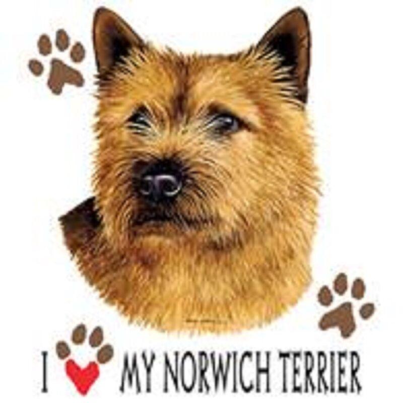 Norwich Terrier Love Tote
