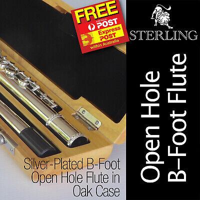 OHB Flute • STERLING Open Hole B Flute • 17 keys • Brand New • Luxury Oak Case •
