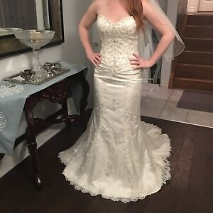 Wedding Dress Size 12 and Veil ***LOW PRICE***