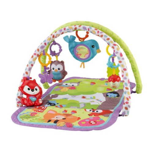 New - Fisher-Price 3-in-1 Musical Activity Gym with Music & Sounds