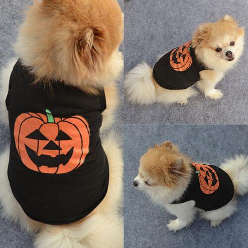 Pet Dog Halloween Pumpkin Outfit Costume Puppy Coat Sweater Jumper Cute Clothes 1