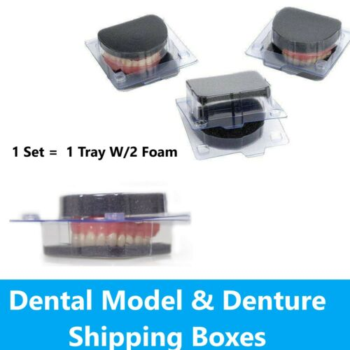Model and Denture Shipping Container, Includes Tray w/ 2 Foams Vacuum Former Set