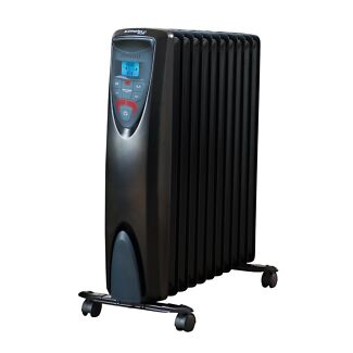 Dimplex Heater with Remote