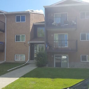1 Bedroom Apartment in Bower Available October 1