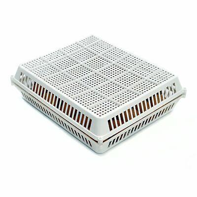 Egg Basket - 30 Egg Easy To Clean Durable Incubator Hatchers
