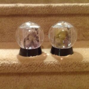 Picture Snow Globes (Picture Frames)
