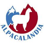 alpacalandia