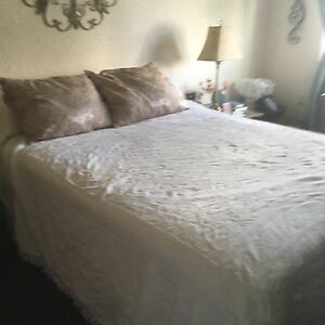 Double size bed spread and shams Regina Regina Area image 1