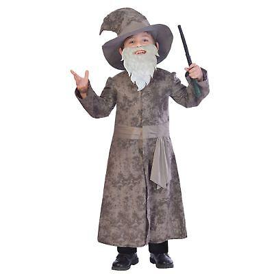Grau Weise Zauberer Kostüm Kostüm Harry Fantasie Merlin - Weise Zauberer Kostüm
