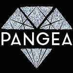 pangea-201-445-4199