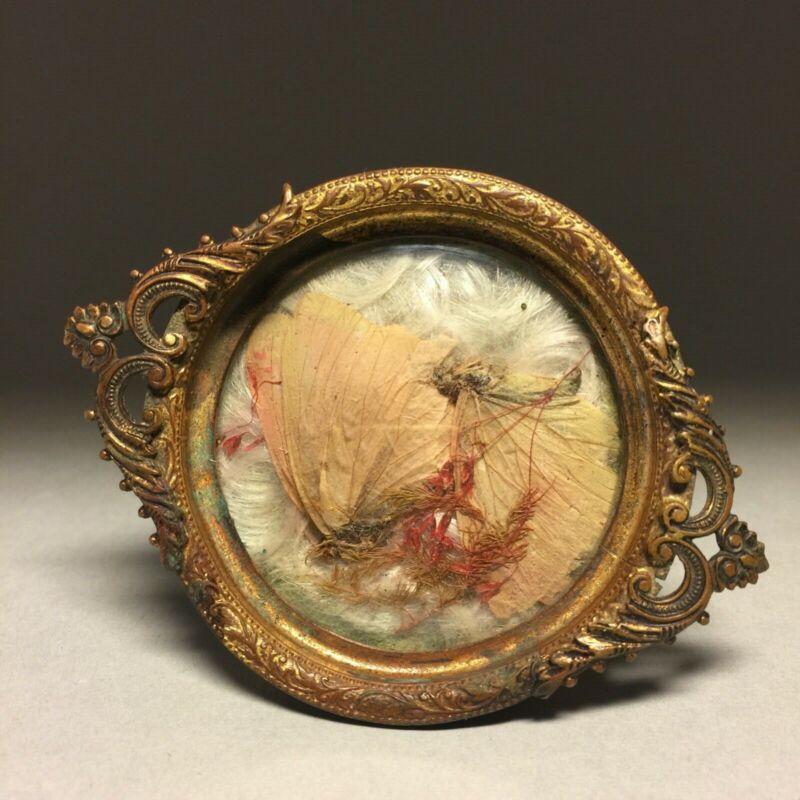 Victorian Mourning Memento Mori keepsake with Human hair, butterflies & flowers
