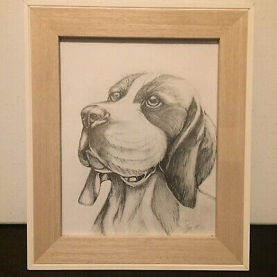 Beagle Dog Pencil Drawing Gift Bespoke Picture *Signed Original By S Tipple 2018
