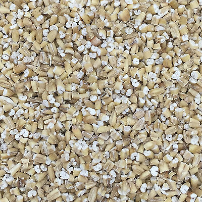 25Kg Pinhead Oatmeal for Wild Bird Food and suitable for Particle Fishing Mix
