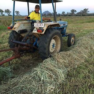 Rhode grass hay Rosevale Ipswich South Preview