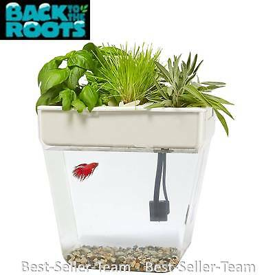 Back to the Roots Water Garden 3 Gallon Small Aquaponic Growing System Fish Tank