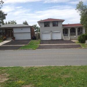 Humber College & HWY 27 - Room for Rent