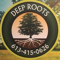 Deep Roots Tree Removal
