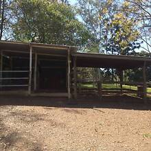 Horse Agistment Brookfield for up to 2 horses Brookfield Brisbane North West Preview