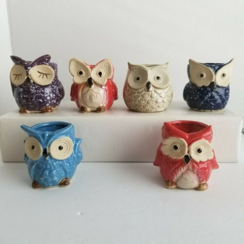Owl Faces Ceramic Flower Pots Glazed for Succulent Planter D