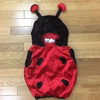 Lady Bug Baby Girl Hooded Velvet Halloween Costume. Size 12-24M