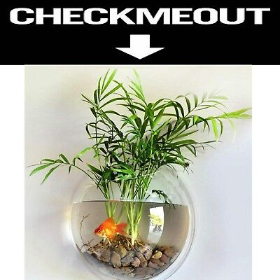 Wall Mounted Fish Bowl 0.5 Gallon Fish Tank Plant Bowl Acrylic Clear 9x9x4 inch