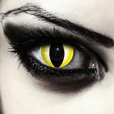 Gelbe farbige Katzenaugen Kontaktlinsen für Halloween Kostüm Yellowstar Cateye