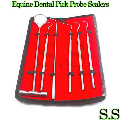 6 Pcs Equine Dental Pick Probe Scalers Veterinary Instruments New Kit